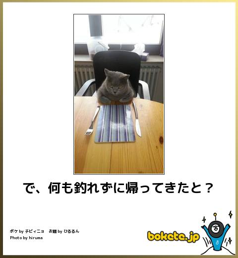 bokete, おもしろ, まとめ, ボケて, 爆笑, 画像1429