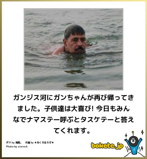 bokete, おもしろ, まとめ, ボケて, 爆笑, 画像1529