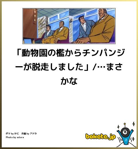 bokete, おもしろ, まとめ, ボケて, 爆笑, 画像1573