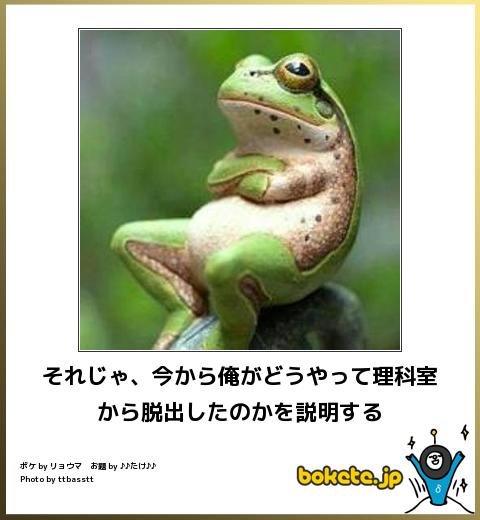 bokete, おもしろ, まとめ, ボケて, 爆笑, 画像1581
