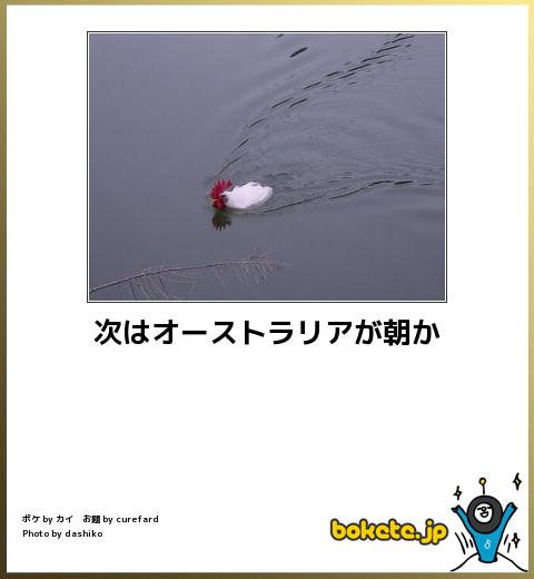 bokete, おもしろ, まとめ, ボケて, 爆笑, 画像1829