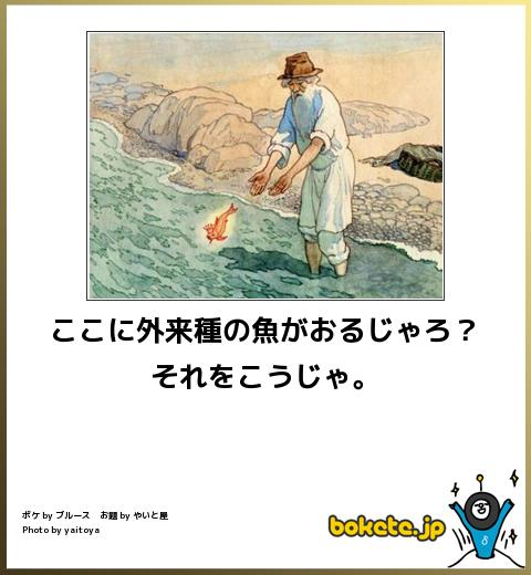 bokete, おもしろ, まとめ, ボケて, 爆笑, 画像1847