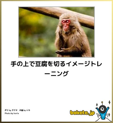 bokete, おもしろ, まとめ, ボケて, 爆笑, 画像2142