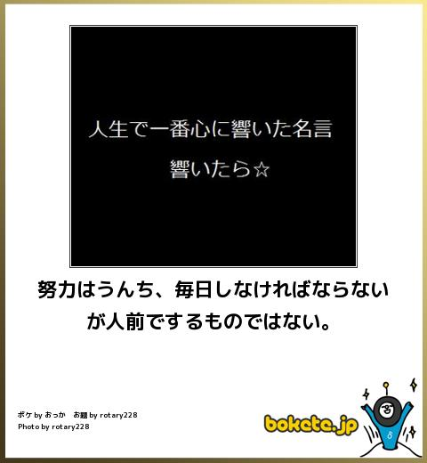 bokete, おもしろ, まとめ, ボケて, 爆笑, 画像2725