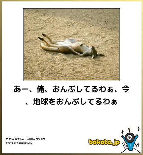 bokete, おもしろ, まとめ, ボケて, 爆笑, 画像3409