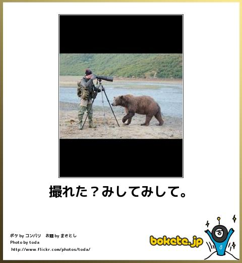 bokete, おもしろ, まとめ, ボケて, 爆笑, 画像4167