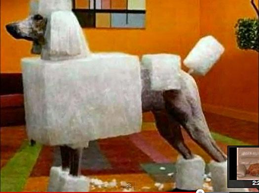 ぐぅかわ,面白,犬,画像,まとめ024