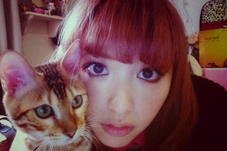 美しい,可愛い,美人飼い主,猫,画像003