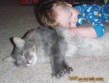 癒されたい,必見,赤ちゃん,猫,仲良し,画像008