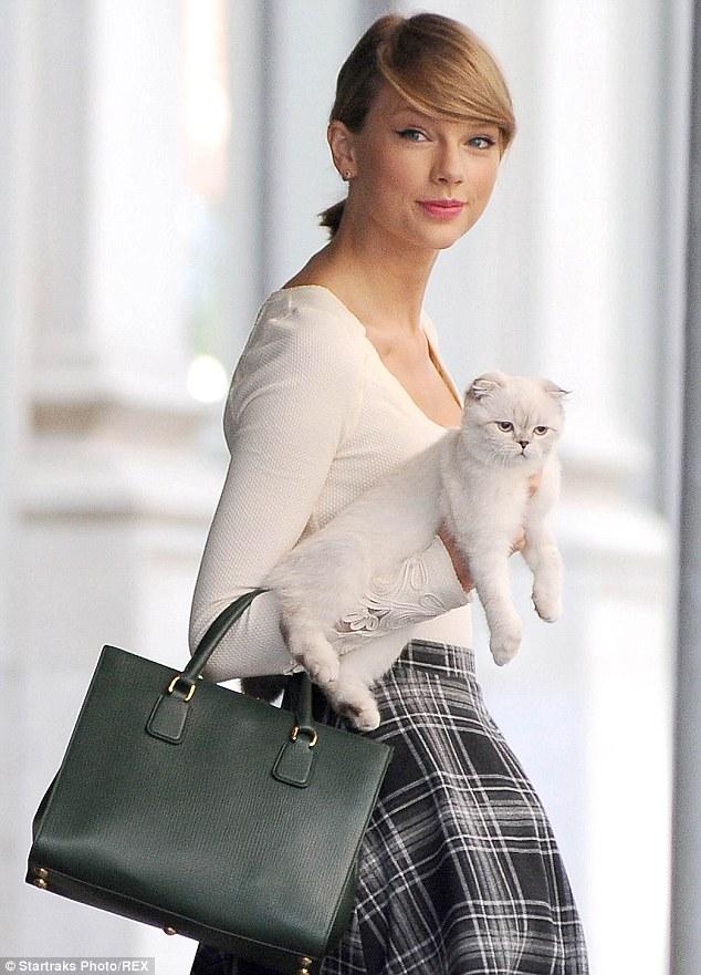 美しい,可愛い,美人飼い主,猫,画像008