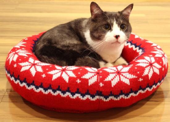 猫,ベッド,画像008