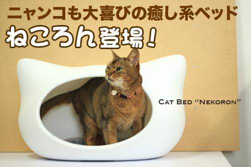 猫,ベッド,画像011