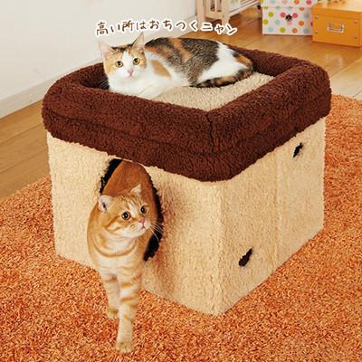 猫,ベッド,画像012