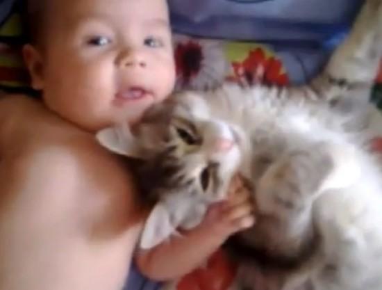 癒されたい,必見,赤ちゃん,猫,仲良し,画像012