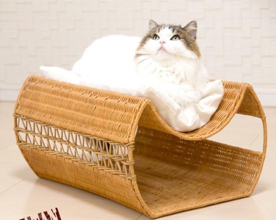 猫,ベッド,画像013
