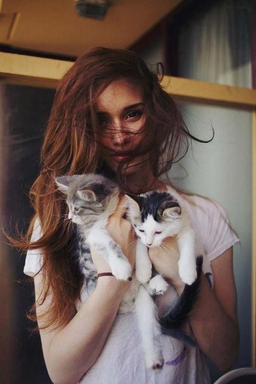 美しい,可愛い,美人飼い主,猫,画像027