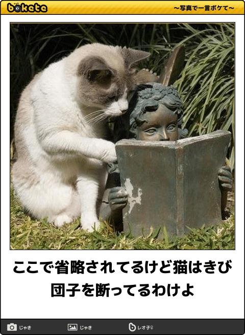 爆笑,可愛く,おもしろい,猫,bokete,画像040