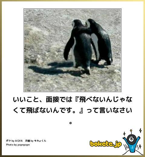 omoshiro027