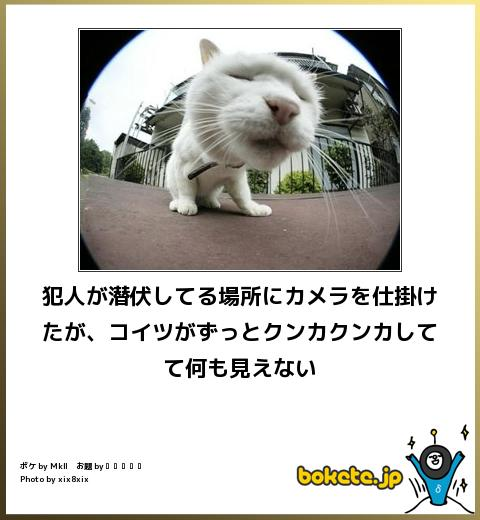 omoshiro1163