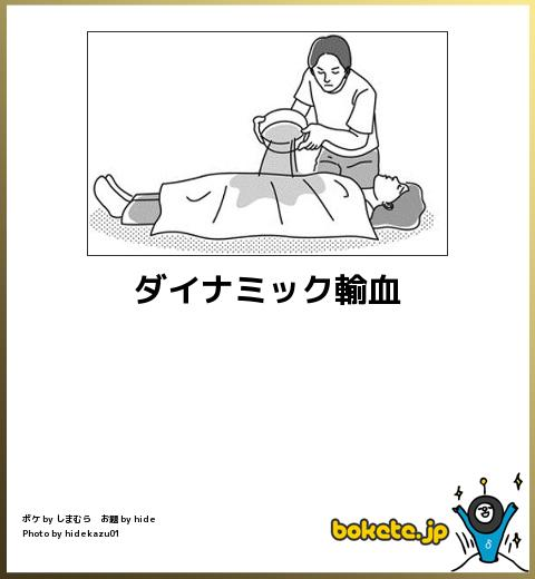 爆笑,腹痛い,bokete,画像,まとめ848
