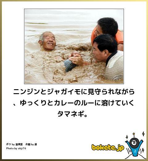 omoshiro973