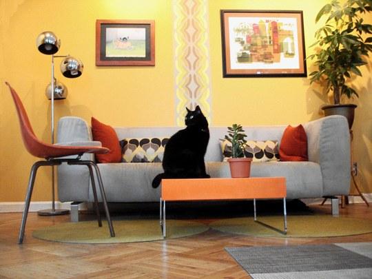 猫,素敵,部屋,画像,貼っていく001