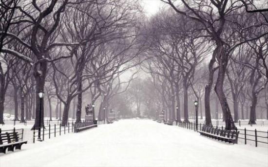 寒い,冬,画像,貼っていく009