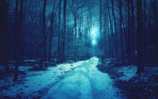 寒い,冬,画像,貼っていく011