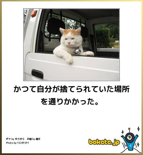 omoshiro1103