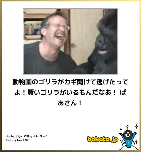 omoshiro230