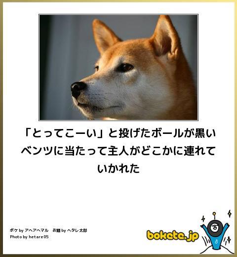 omoshiro446