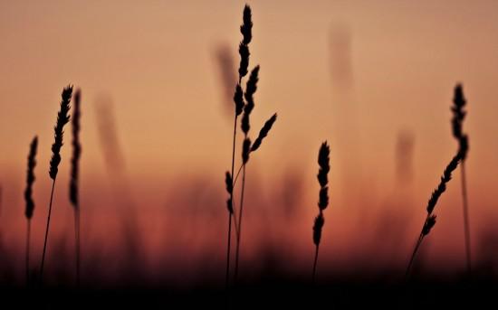 オシャレ,雰囲気,画像,まとめ014