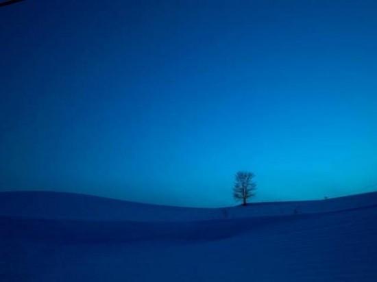 冬,画像,貼っていく035