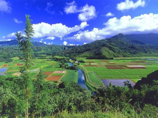美しすぎ,田舎,風景,画像,貼っていく