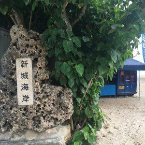 ウミガメに出会える!新城海岸のシュノーケリング体験【宮古島アクティビティ】